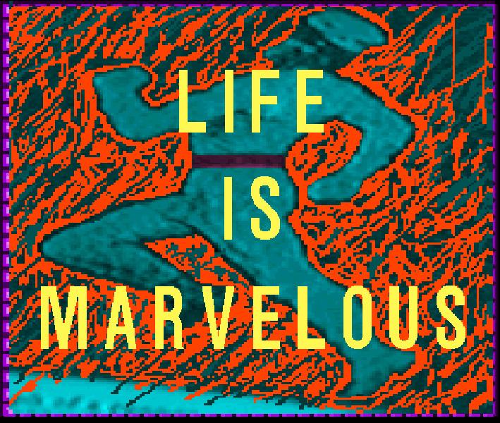 lifeIsMarv