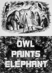 owlPaints
